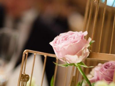 挙式会場のピンクのバラ