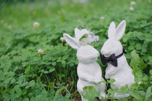 クローバーとウサギの夫婦