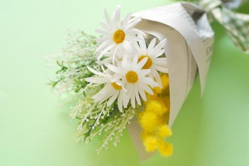 オシャレにラッピングされたマーガレットの花束