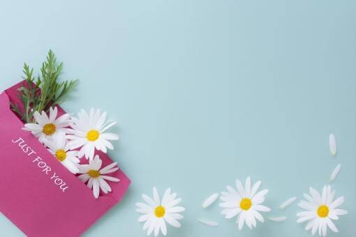 ピンクの封筒とマーガレット
