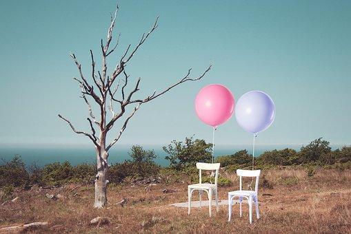 裸の木と新郎新婦の椅子